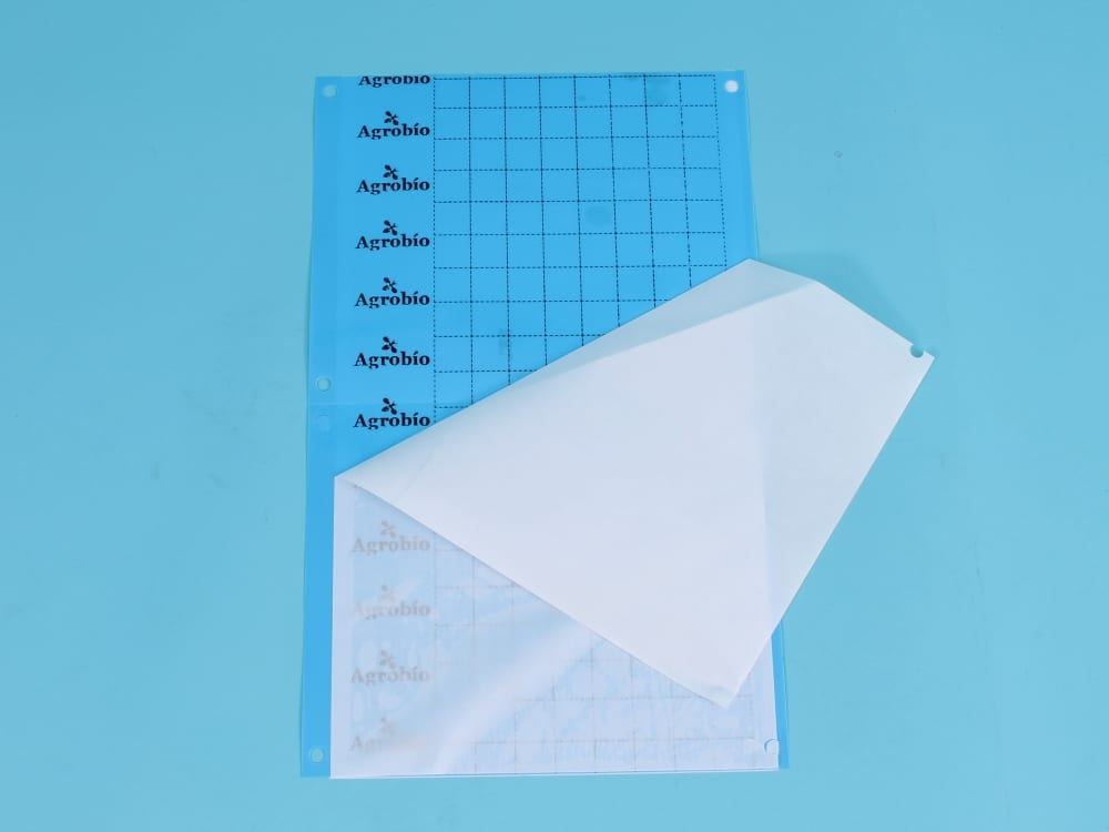 Trampa adhesiva azul contra trips